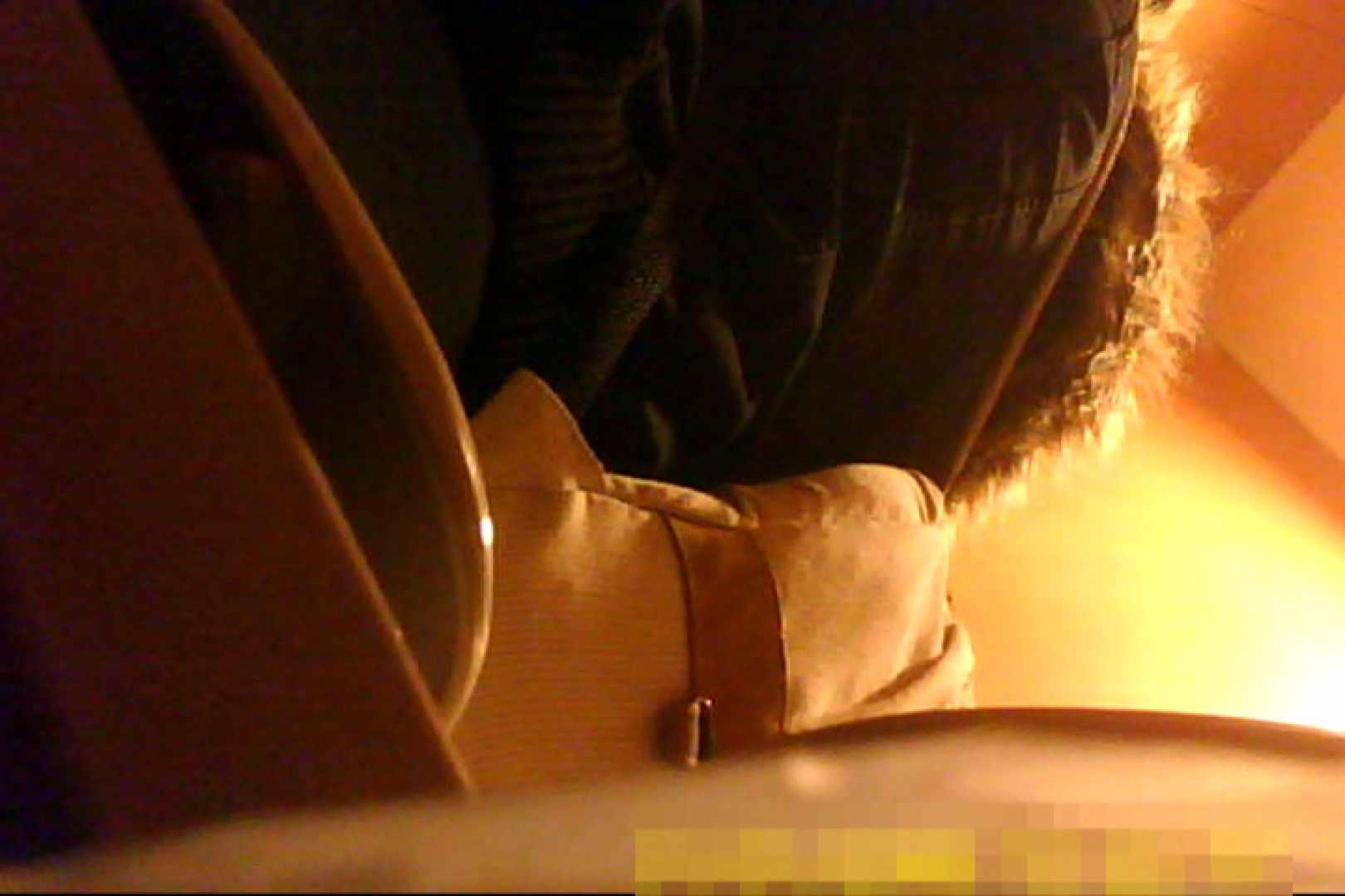 魅惑の化粧室~禁断のプライベート空間~vol.7 プライベート   独身エッチOL  89pic 1