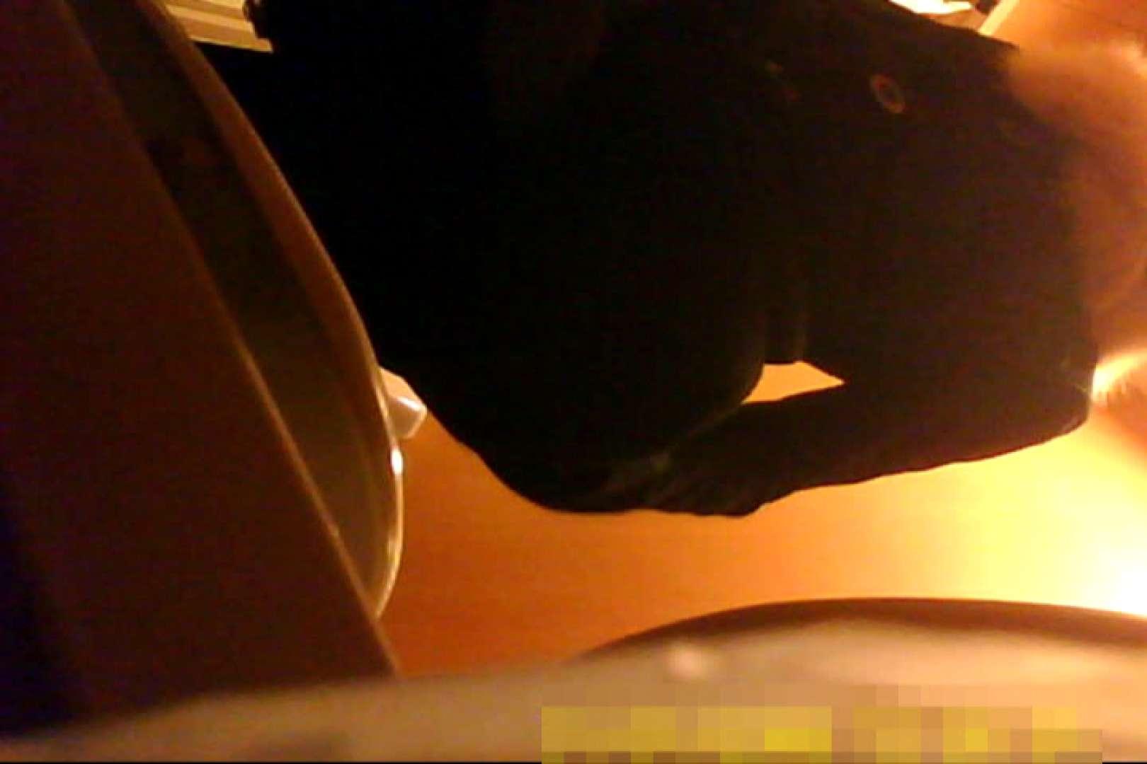 魅惑の化粧室~禁断のプライベート空間~vol.7 プライベート   独身エッチOL  89pic 29
