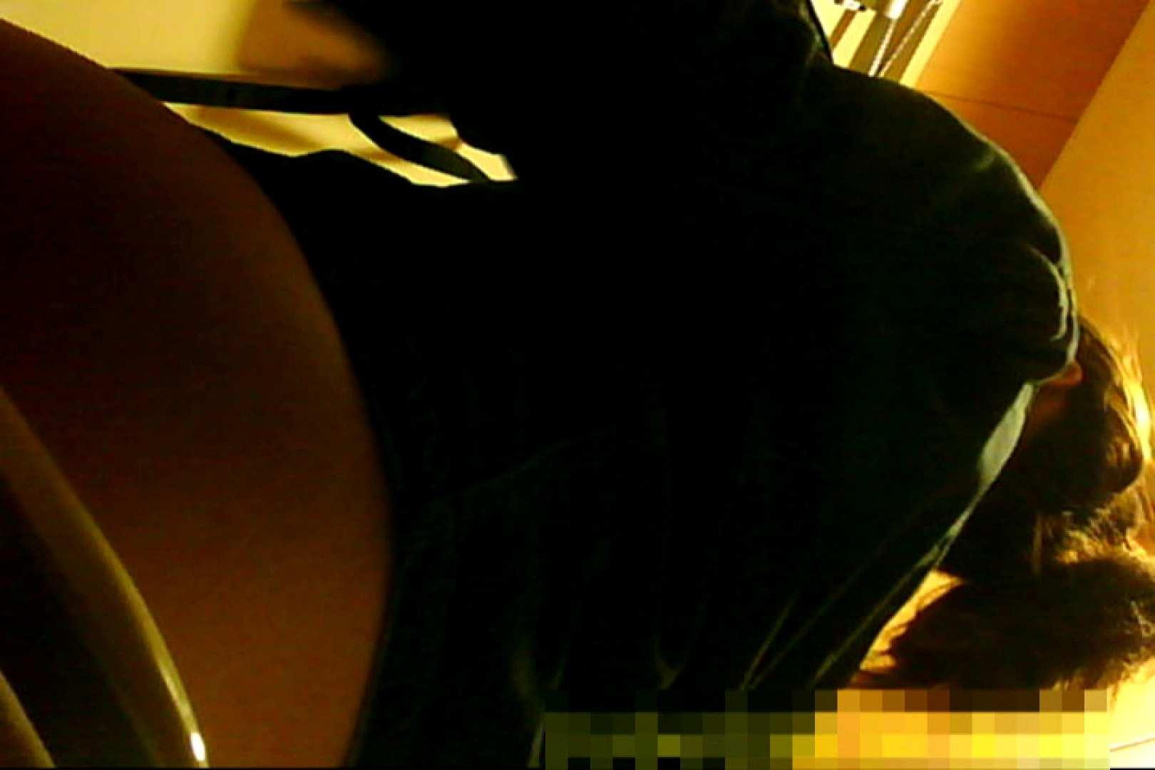 魅惑の化粧室~禁断のプライベート空間~33 プライベート   0  45pic 17