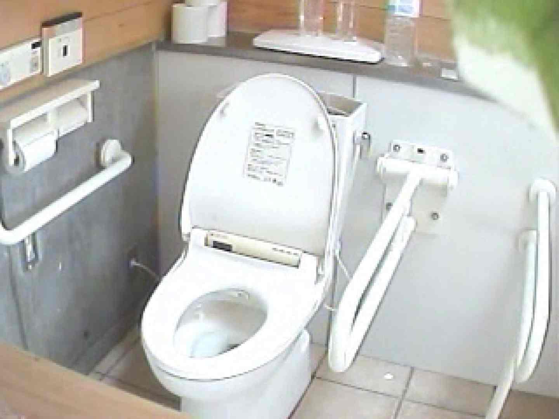 水着ギャル洋式洗面所 Vol.3 トイレで放尿 | ギャルライフ  95pic 38